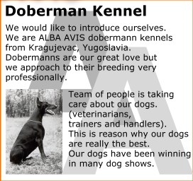 Doberman Kennel